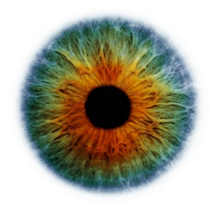 eye-scapes-011